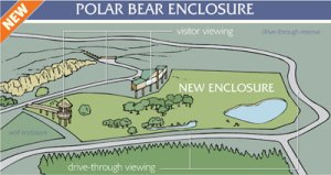 A plan for the new polar bear enclosure, situated where the old wolf enclosure once was