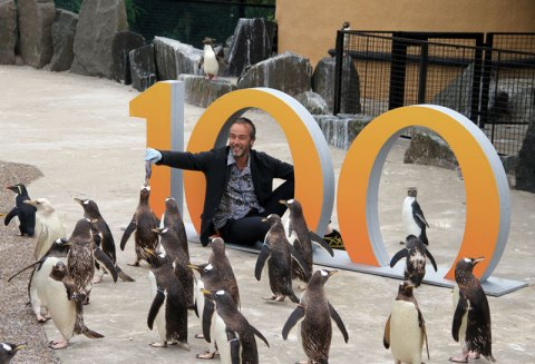 Actor, John Hannah with our penguins and 100 birthday sign