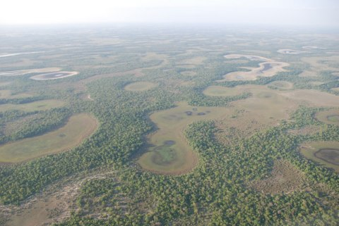 Pantanal-from-the-air