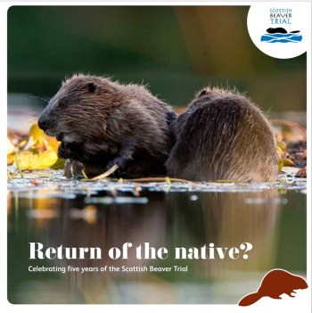 Celebrating-the-Scottish-Beaver-Trial-frontcover