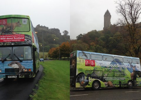 The bus at two of Stirling's famous landmarks – Stirling Castle on the left and the Wallace Monument on the right.