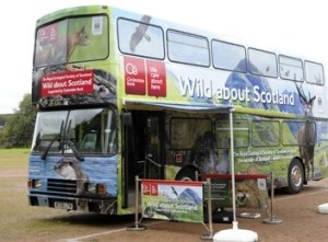 Wild About Scotland Bus