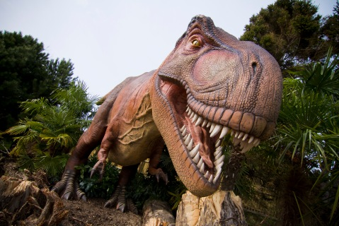Dinosaurs Return exhibition opens at Edinburgh Zoo.