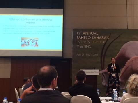 Dr Helen Senn presenting at the 15th Annual Sahelo-Saharan Interest Group Meeting in Abu Dhabi