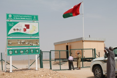 Entering the reserve, most famous for being the site of the first Arabian Oryx reintroduction.