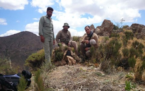 Mohammad and his team at a camera trap location in Salouk (M.Farhadinia)