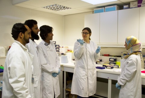 RZSS WildGenes technicians Jennifer Kaden (Centre) and Muhammad Ghazali (Centre right) training scientist from the OCE and the laboratory in Edinburgh Zoo