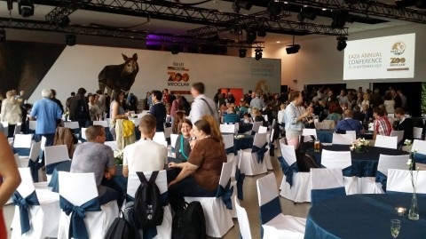 EAZA Conference ice-breaker, Wroclaw, Poland